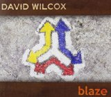Перевод на русский язык трека If It Wasn't for the Night. David Wilcox