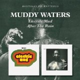 Перевод на русский песни Take The Bitter With The Sweet. Muddy Waters
